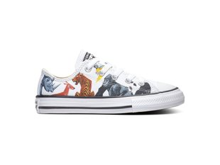 CONVERSE CHUCK TAYLOR ALL STAR 668462C